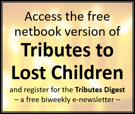 Read FREE Netbook Version …